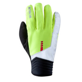 Gloves Artic